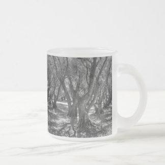 Tree Tunnel Coffee Mugs
