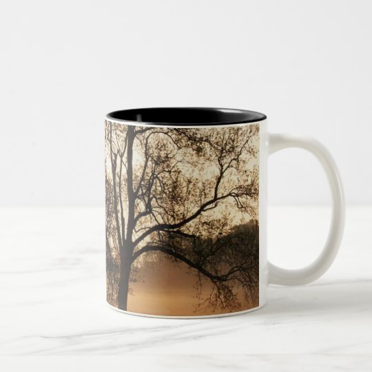 Tree Two-Tone Coffee Mug