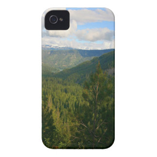 Tree Valley Of Green iPhone 4 Case-Mate Case