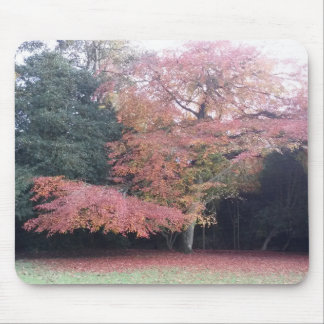 Tree with pink leaves autumn colours mouse mat
