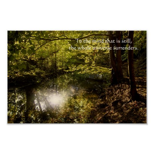 Tree with sun and wise Lao Tzu quotation Poster
