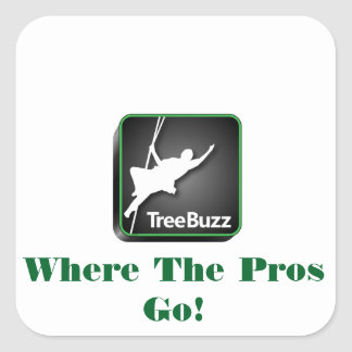 TreeBuzz square sticker