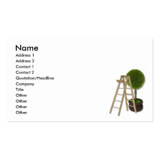 TreeLadder083010, Name, Address 1, Address 2, C... Pack Of Standard Business Cards