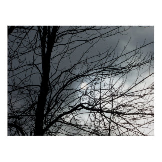trees against sky poster