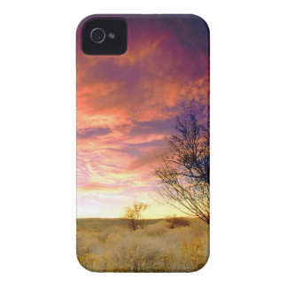 Trees Almond Tree Antelope Valley iPhone 4 Cover