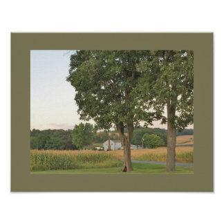 Trees and Farmland Photo Poster