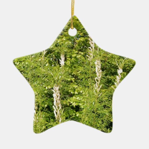Trees And Grasses Christmas Tree Ornament