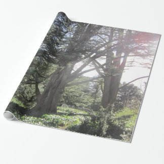 Trees and leaves wrapping paper