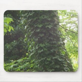 Trees and vines mouse pad
