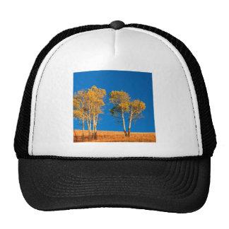 Trees Autumn Aspen Yellowstone Wyoming Trucker Hat