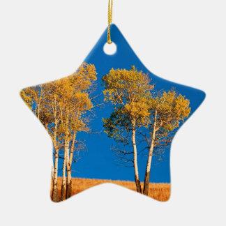 Trees Autumn Aspen Yellowstone Wyoming Ceramic Star Decoration