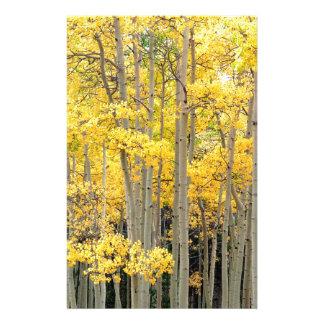 Trees Autumn Aspens Kenosha Pass Colorado Customized Stationery