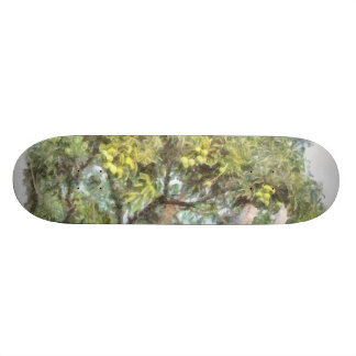 Trees bearing fruits skate board deck