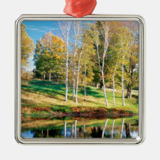 Trees Birch Vermont Christmas Ornament