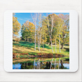 Trees Birch Vermont Mouse Pads