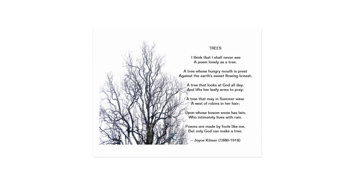 analysis of trees by joyce kilmer A poet linked to the grotto -- joyce kilmer before leaving the subject of trees, it seems an appropriate time to share the story of another notable associated with notre dame, the grotto, and another tree on campus -- joyce kilmer.