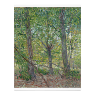 Trees by Vincent Van Gogh Flyer