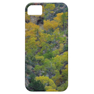 TREES FALL AUTUMN iPhone 5 COVERS