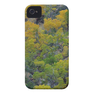 TREES FALL AUTUMN Case-Mate iPhone 4 CASES