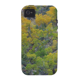 TREES FALL AUTUMN iPhone 4/4S COVERS