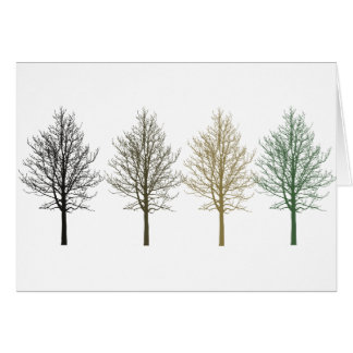 Trees Four Colors Greeting Card