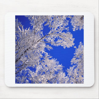 Trees Frosted Boulder Colorado Mousepad