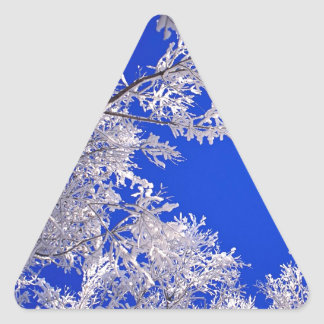Trees Frosted Boulder Colorado Triangle Sticker
