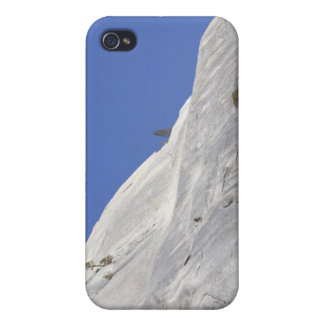 Trees growing in hostile granite environment case for the iPhone 4