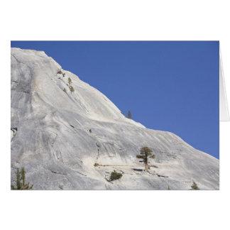 Trees growing in hostile granite environment greeting card