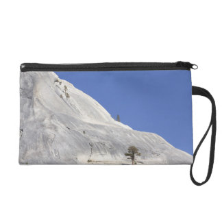 Trees growing in hostile granite environment wristlet