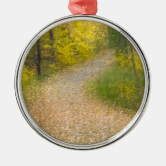 Trees in Autumn Colors and Leaf-Covered Pathway Christmas Ornament