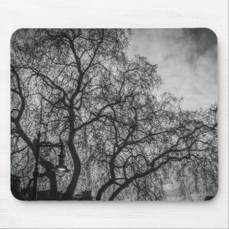 Trees in black and white mousepad