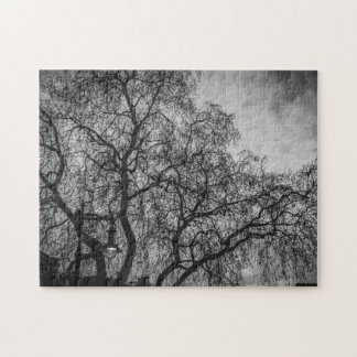 Trees in black and white photo puzzle