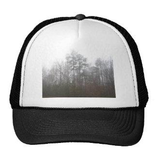 Trees In Fog Trucker Hat