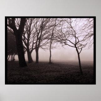 Trees in Fog Landscape Poster