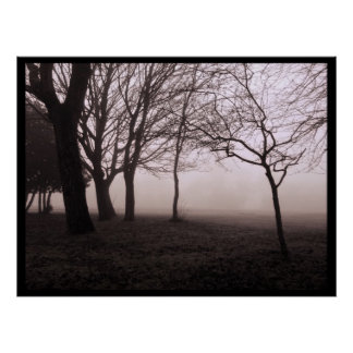Trees in Fog Landscape Posters