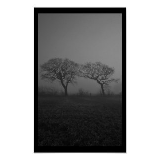 Trees In Fog Silhouette Poster