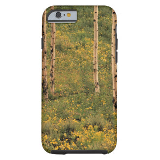 Trees in Grand Teton National Park , Wyoming Tough iPhone 6 Case