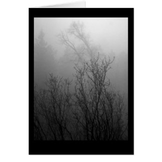 Trees in Mist Note Card