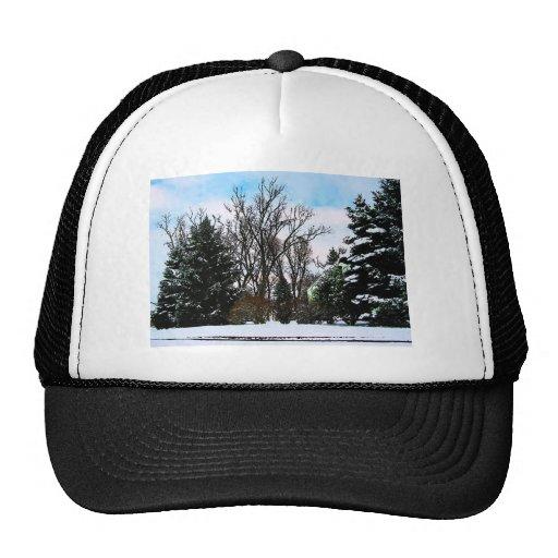 Trees in Snow Mesh Hat