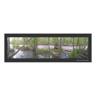 Trees In Swamp Water Bookmark Business Card