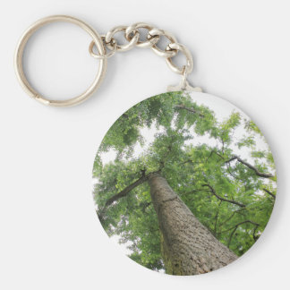 trees in the forest key ring