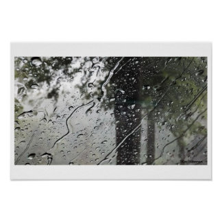 Trees in the Rain Poster