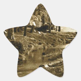 Trees in Yorkshire Star Sticker