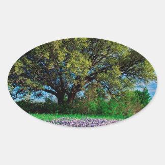 Trees Live Oak Among Texas Bluebonnets Sticker