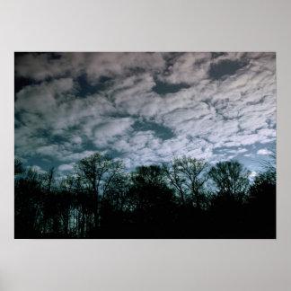 Trees Meet Sky Posters