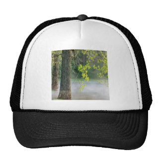 Trees Morning Fog Percy Warner Tennessee Mesh Hats