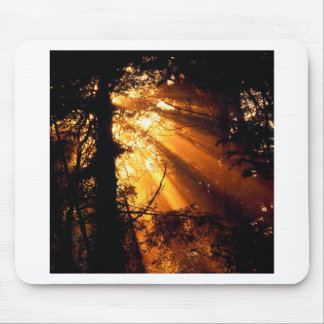 Trees Mystic Sunbeams Olympic Mouse Pad