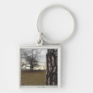 Trees New York NYC Sunrise Central Park Skyline Key Ring