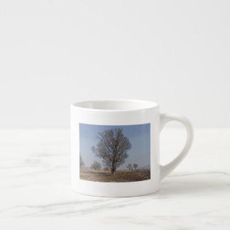 Trees of lakeshore espresso cup